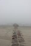 Galveston in the mist